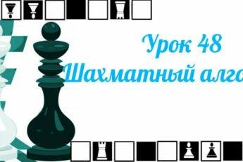 Урок-48-Шахматный-алгоритм