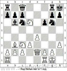 Ход белых мат в 1 ход 10