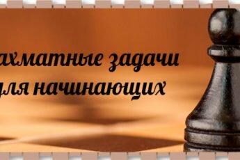 Шахматные-задачи-для-начинающих