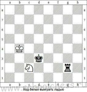 Шахматные задачи для начинающих 1