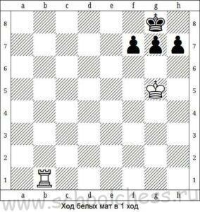Шахматные задачи для детей 1