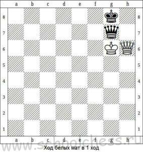 Шахматные задачи для детей 10