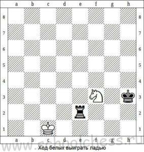 Шахматные задачи для начинающих 2