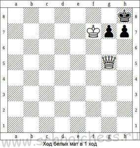 Шахматные задачи для детей 2