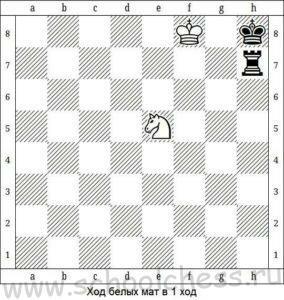 Шахматные задачи для начинающих 3