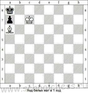 Шахматные задачи для детей 3
