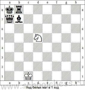 Шахматные задачи для начинающих 4