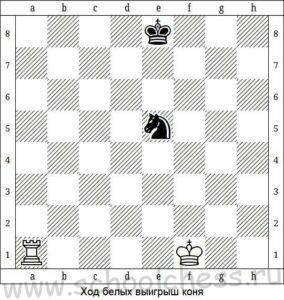 Шахматные задачи для начинающих решения решение задач деревянный алгоритм