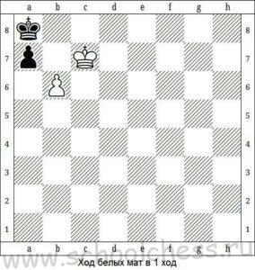 Шахматные задачи для детей 5