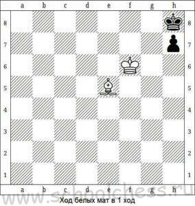 Шахматные задачи для детей 6