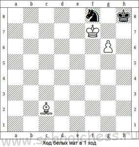 Шахматные задачи для детей 8