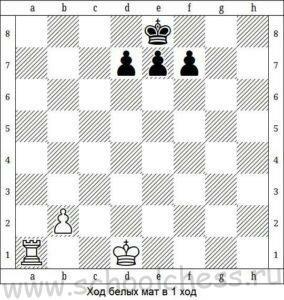Шахматные задачи для детей 9
