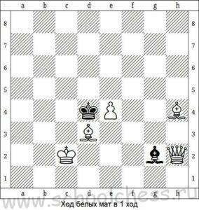 Школа шахмат Мат в 1 ход 1