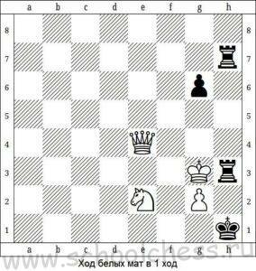 Шахматы мат в 1 ход 10