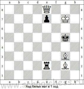 Школа шахмат Мат в 1 ход 10
