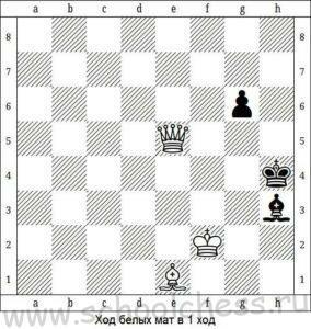 Шахматы мат в 1 ход 2