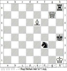 Школа шахмат Мат в 1 ход 3