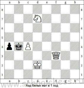 Школа шахмат Мат в 1 ход 4