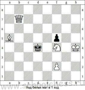 Шахматы мат в 1 ход 5