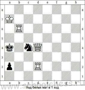 Школа шахмат Мат в 1 ход 5