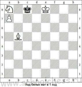 Шахматы мат в 1 ход 6
