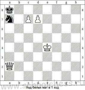 Школа шахмат Мат в 1 ход 6