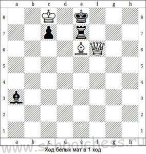 Шахматы мат в 1 ход 7