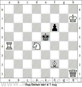 Школа шахмат Мат в 1 ход 7