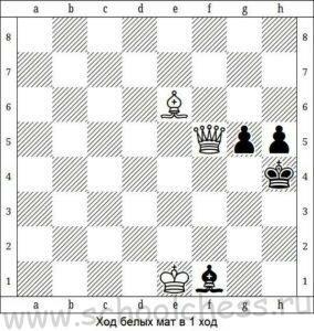 Шахматы мат в 1 ход 8