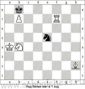 Школа шахмат Мат в 1 ход 8