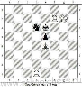 Шахматы мат в 1 ход 9