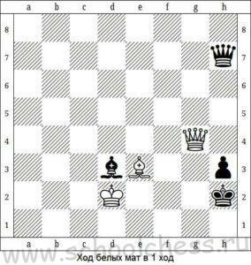 Школа шахмат Мат в 1 ход 9